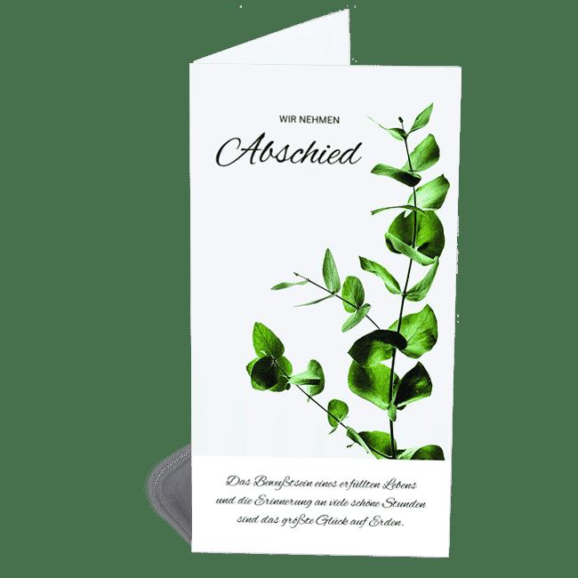 Trauerkarte grüner Zweig